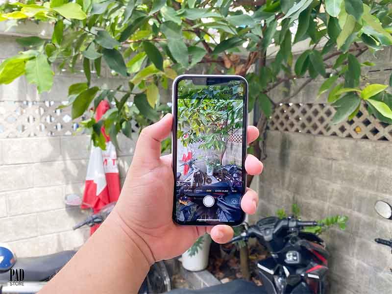 iPhone 11 Cũ 256GB