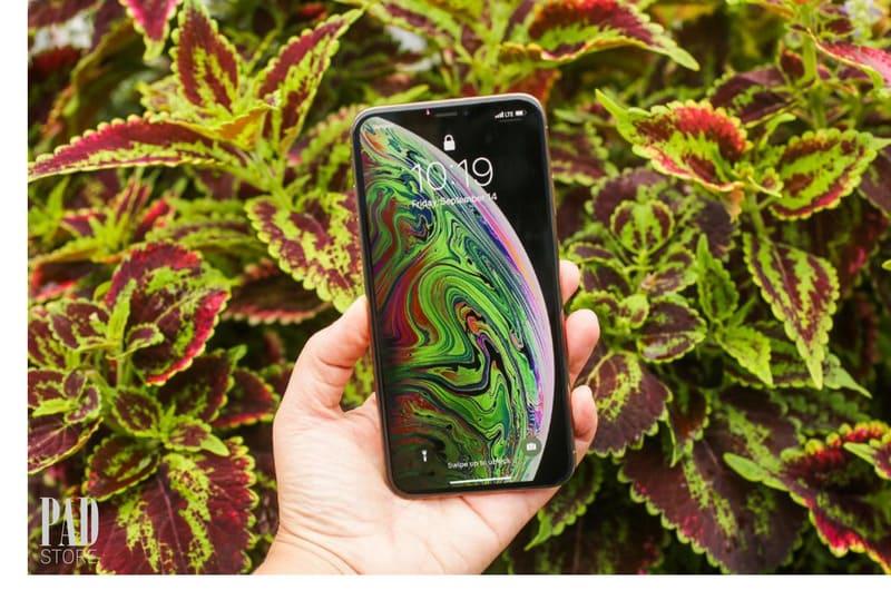 Màn hình iPhone Xs Max sắc nét từng chi tiết.