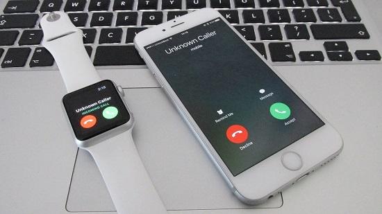 cách kiểm tra seri apple watch
